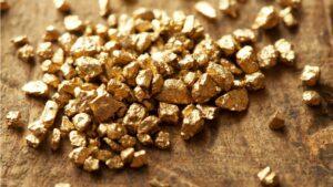 pepites d'or brut